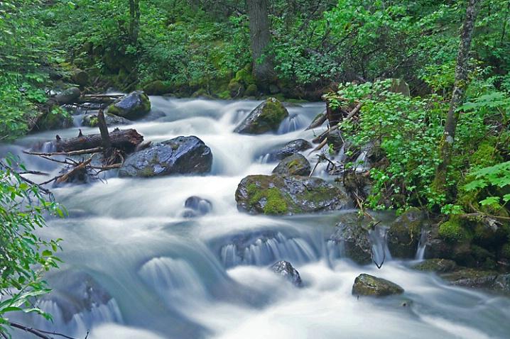Echo Creek