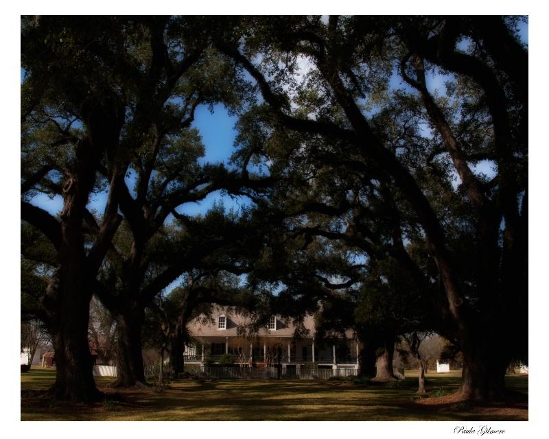 oakland plantation