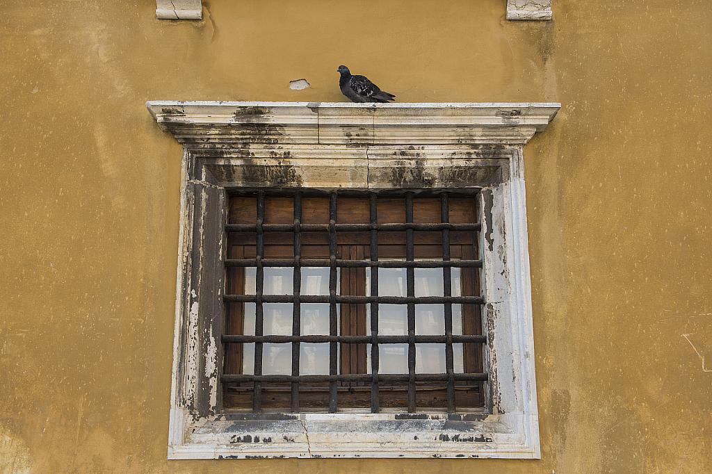 Venice Italy # 6