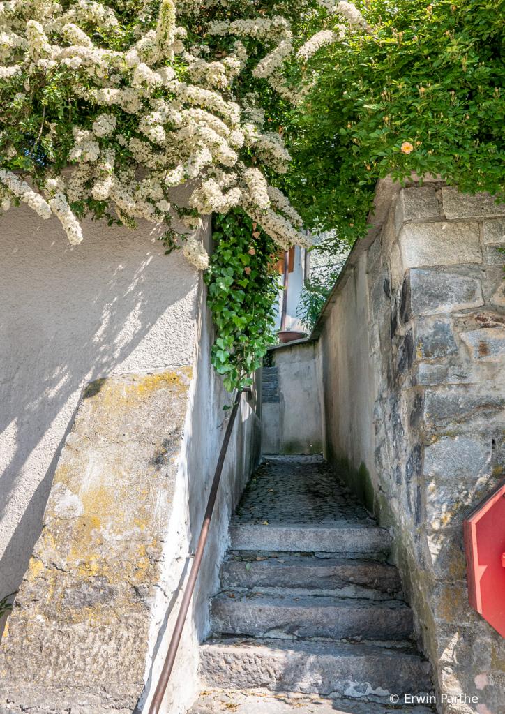 Steps returning from the Veste Oberhouse