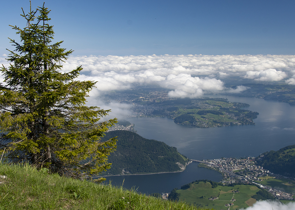 Lake Lucerne from a mountaintop