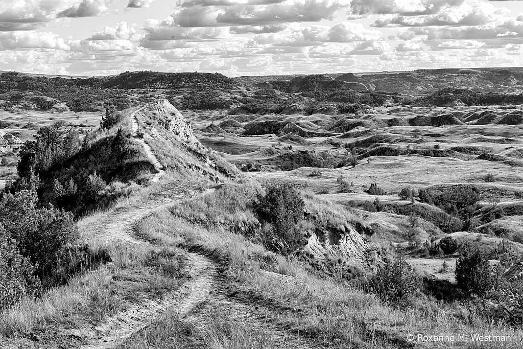 Boicourt trail TRNP North Dakota