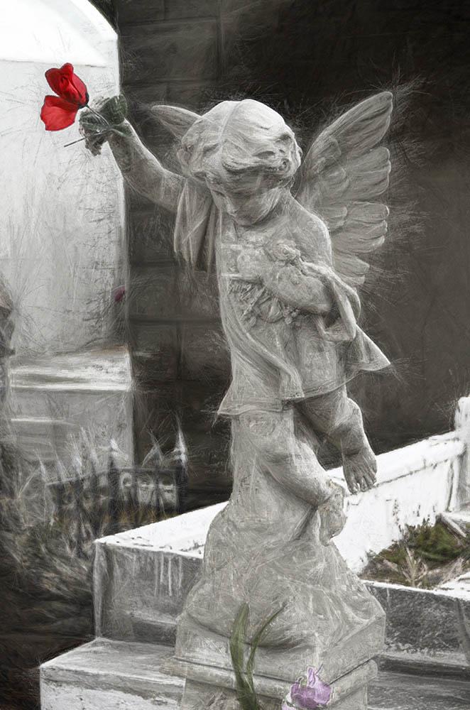 Littlest Angel II