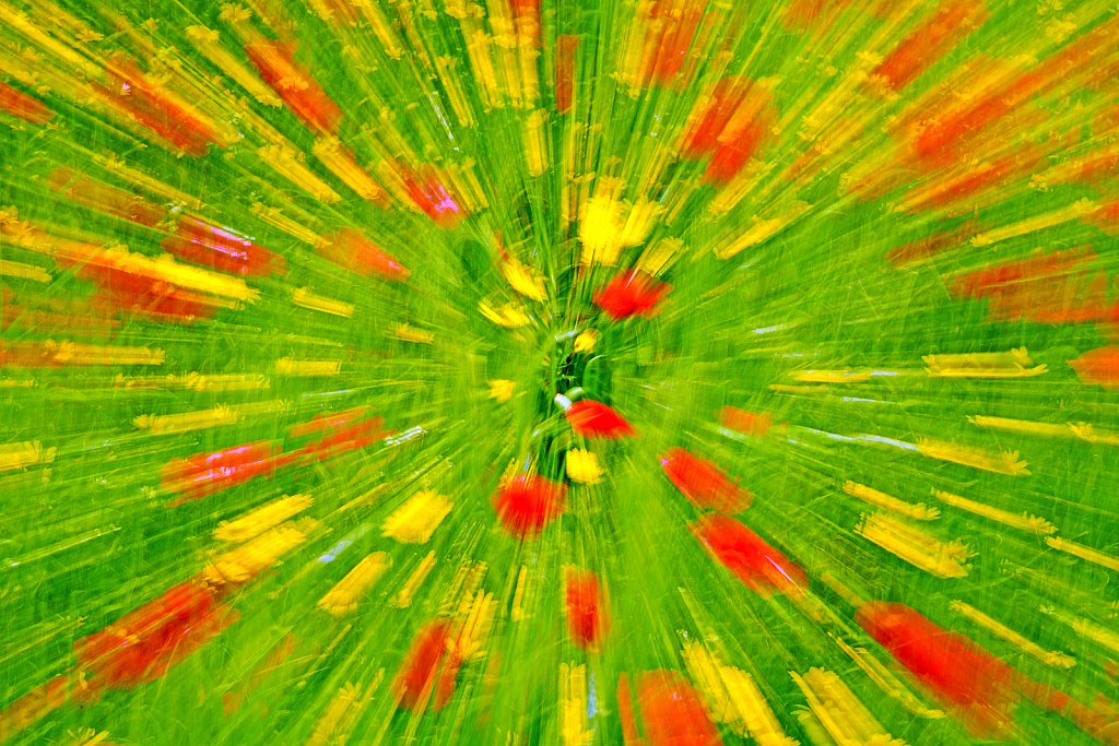 Red & Green colors in motion.