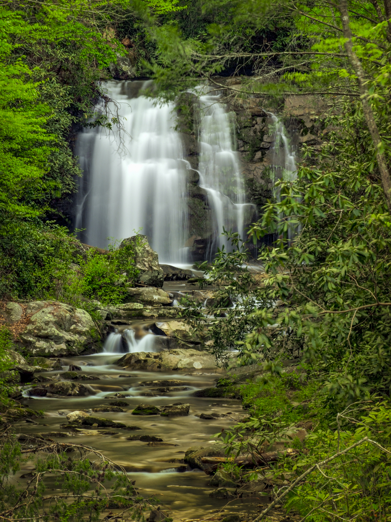 Waterfall In The Smoky Mountains