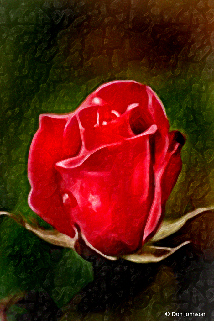 Lovely Artistic 2 Red Rose 4-25-20 212