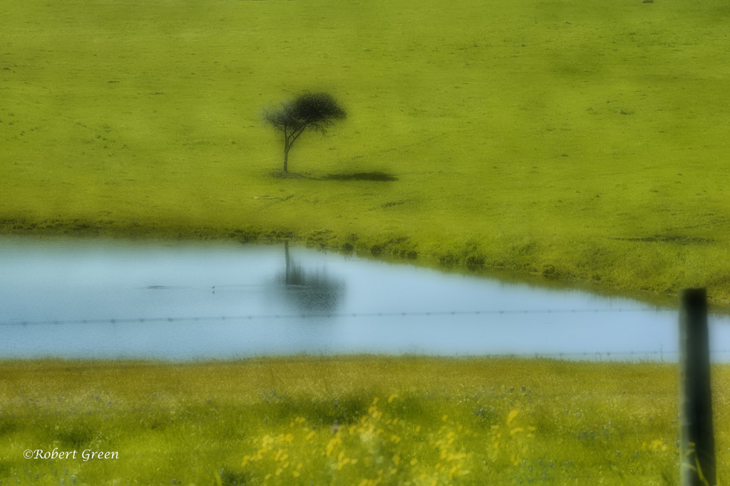 Green Pastures...Still Waters