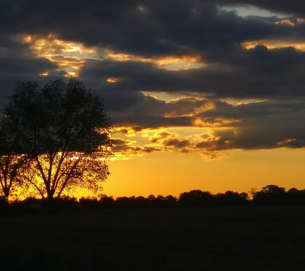 Sunset over Northwest Florida farm