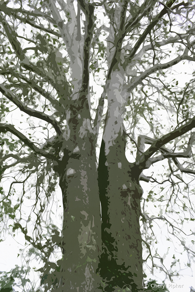 Two Trees as One - Abstract