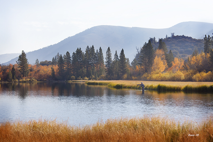 Fall colors and a fisherman