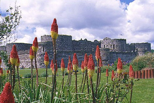 Beaumaris Castle - ID: 889 © Jim Miotke