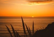 Sunset at Nepentha
