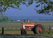 Awaiting its Farmer