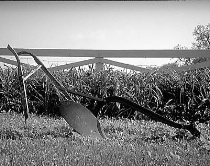 Tired Old Plow