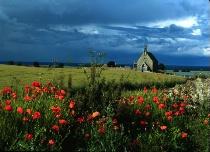 Kingsbarn's Church