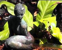 Pond Figure
