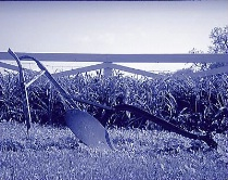 Tired Old Plow (Cyanotype or Blueprint)