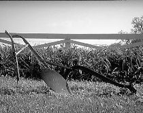 Tired Old Plow (B/W Ortho)