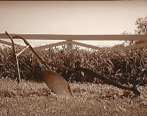 Tired Old Plow (Sepia)