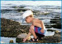 A Child's Curiosity