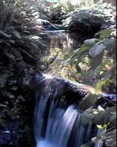 Garden Pond falls