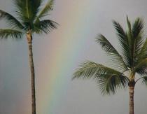 Rainbow in Maui