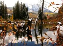 """""""Fall Reflection"""""""