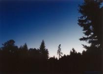 Cascade Dawn