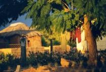 Tuli block Botswana South Africa