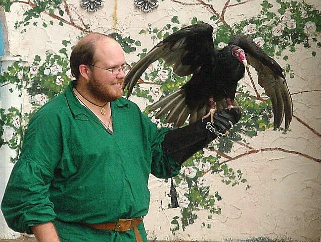 Roadkill Falcon