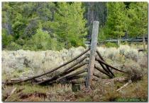 """Forgotten Fence post"""