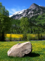 """Spring in the Rockies"""