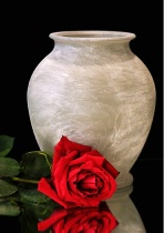 Red Rose and Vase