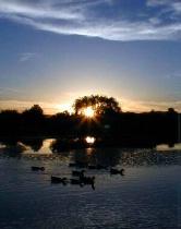 Sunset on Lake Montezuma