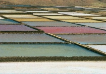 The colours of salt