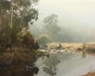 Wonangatta Mist