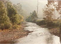 McAlister River