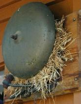Bird Nest with Surprise