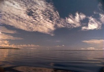 Reflexions at Rio Negro