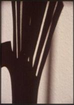 1811_spikey crescent