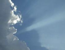 Cloud Dog