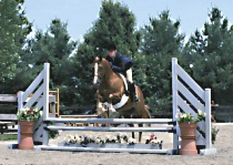 """Over Fences"" (Laura C. on Katie)"