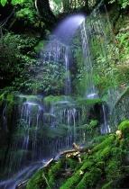 Mossvale Falls.