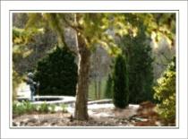 Impressionist public gardens