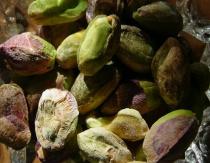 yummm...pistachios