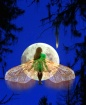 Moon Fairy 3