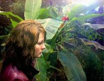 Girl in rain forest