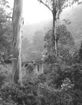 Walhalla Mist