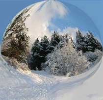 A winter world