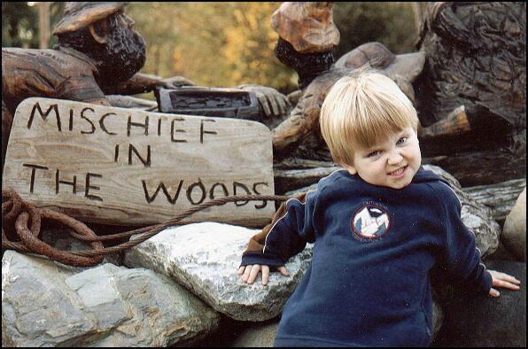 Mischief in the Woods